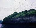bat-rock-nusa-penida