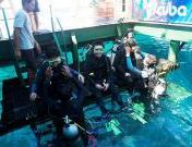 bali-hai-cruise-reef-cruise-diving