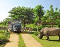 bali-safari-and-marine-park-2