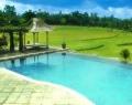 swimmimg-pool