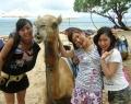 bali-camel-safari-4