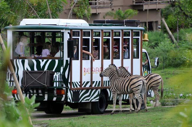 bali-safari-and-marine-park-1
