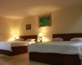 puri-dibia-hotel-executive-room-2