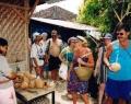 village-coconuts