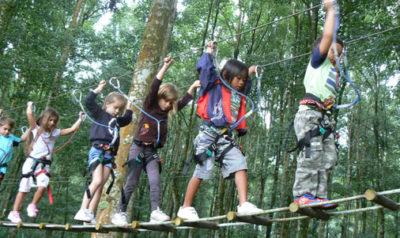 Bali Tree Top 03