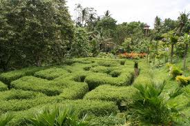Botanical Garden Ubud