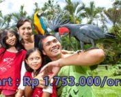 Paket Wisata di Bali 3 Hari 2 Malam : Edisi Liburan