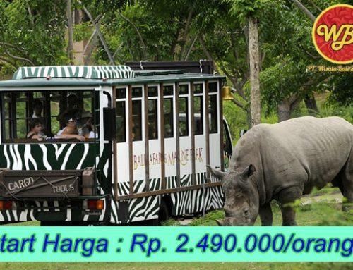 Paket Wisata di Bali 5 Hari 4 Malam : Edisi Keluarga Ceria