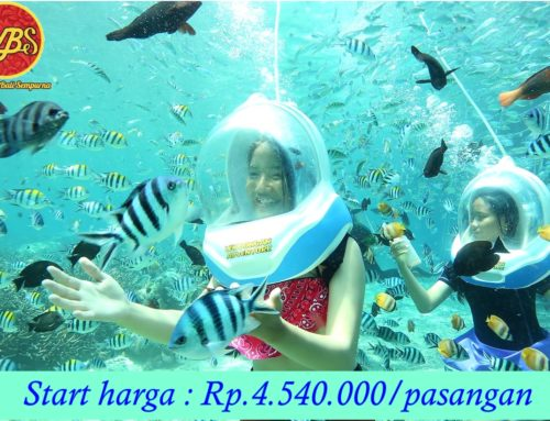 Paket Bulan Madu di Bali 4 Hari 3 Malam : Edisi Adventure