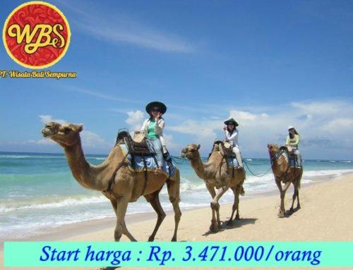 Paket Wisata di Bali 5 Hari 4 Malam : Edisi Eksklusif