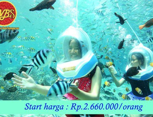 Paket Wisata di Bali 5 Hari 4 Malam : Edisi Marine Walk