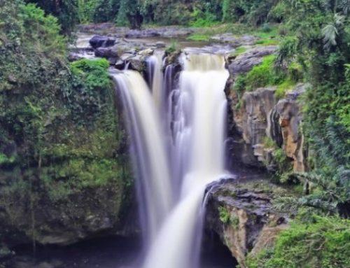 10 Air Terjun Unik dan Tersembunyi yang Wajib Kalian Kunjungi di Bali