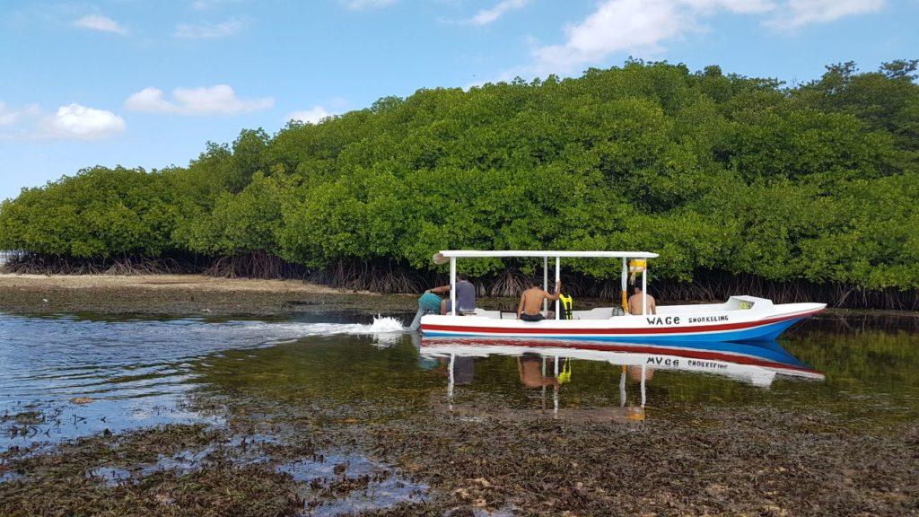 hutan mangrove, Nusa Lembonga