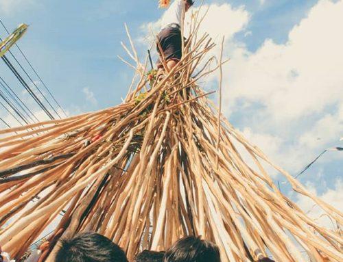 Uniknya Tradisi Mekotek (perang kayu) di desa Munggu, Bali